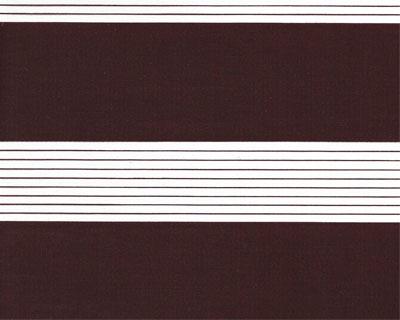 Estores-Vision-Noche-Dia-Basic-6037