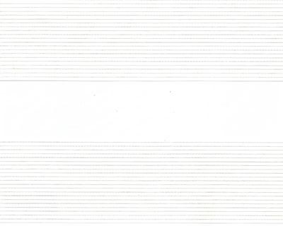 Estores-Vision-Noche-Dia-Delta-6100